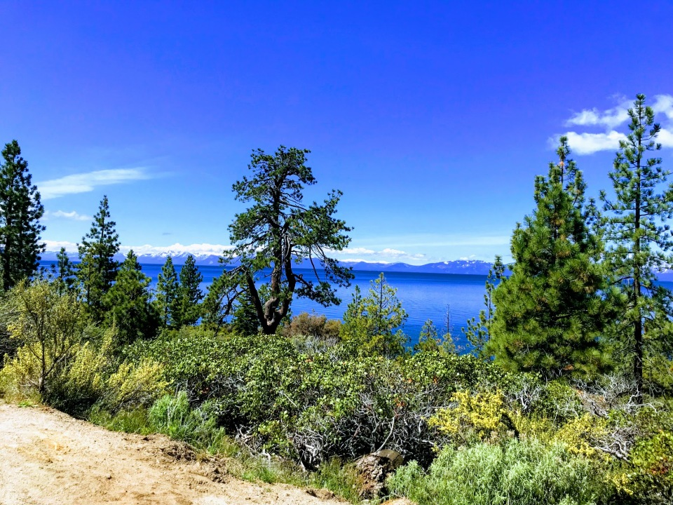 nature-tahoe